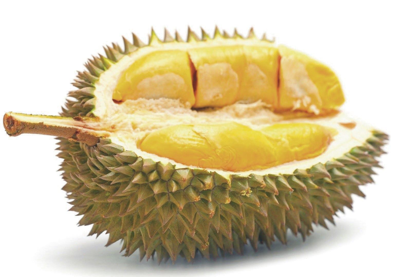 Beautiful durian