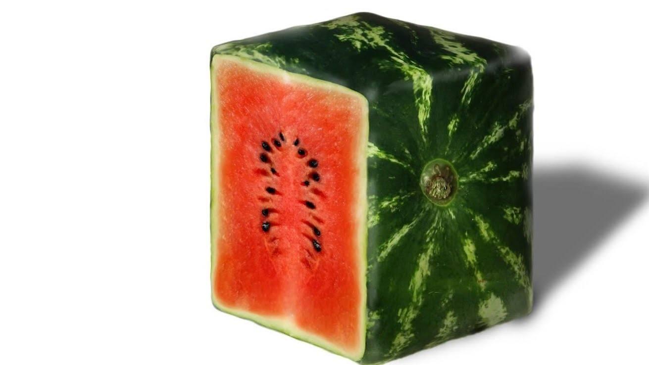 Watermelon squares