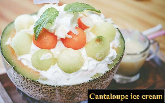 xslinfo-Cantaloupe ice cream-s
